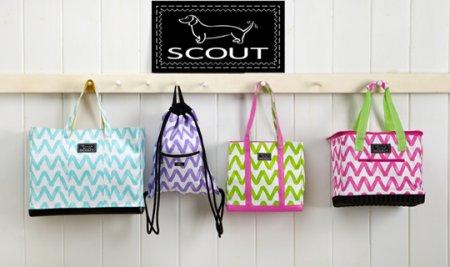 SCOUT-Reusable-Bags